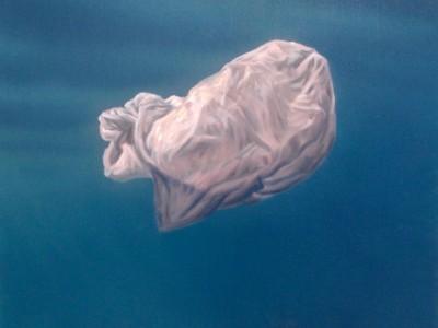 Un sachet plastique